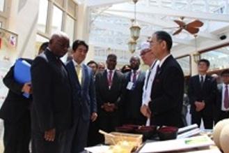 安倍首相モザンビーク訪問に同行
